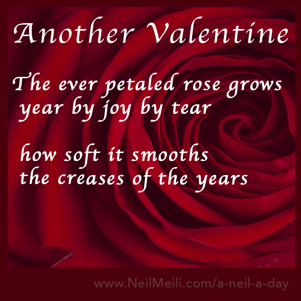The ever petaled rose grows year by joy by tear  how soft it smooths the creases of the years