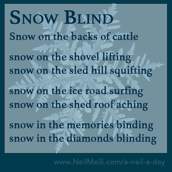 Snow on the backs of cattle  snow on the shovel lifting snow on the sled hill squifting  snow on the ice road surfing snow on the shed roof aching  snow in the memories binding snow in the diamonds blinding
