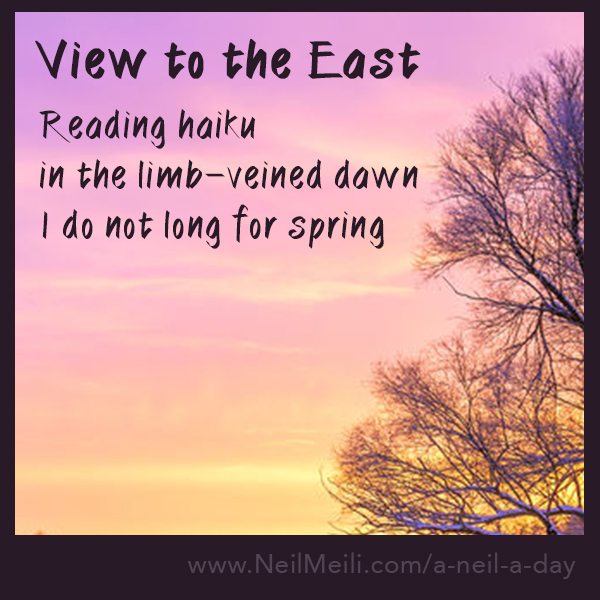 Reading haiku  in the limb-veined dawn  I do not long for spring