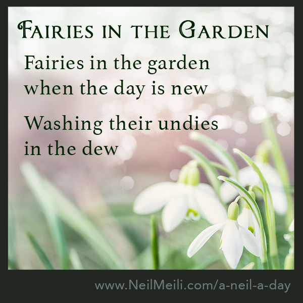 Fairies in the garden when the day is new  Washing their undies  in the dew
