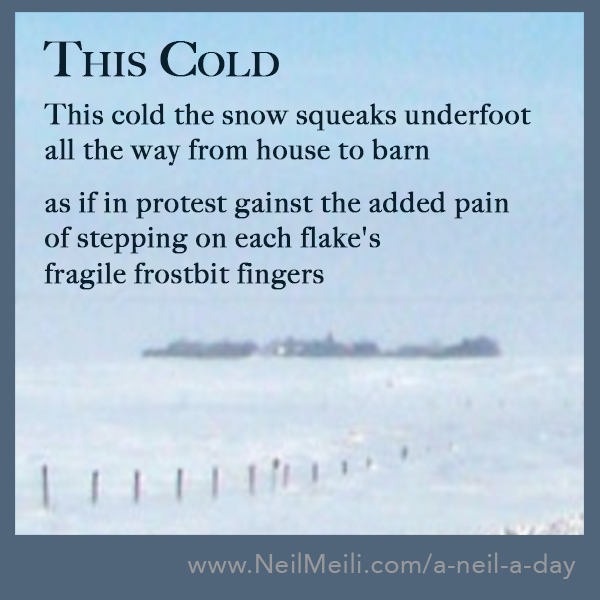 This cold the snow squeaks underfoot all the way from house to barn  as if in protest gainst the added pain of stepping on each flake's  fragile frostbit fingers