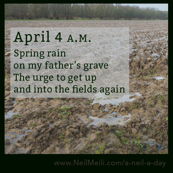 Spring rain on my father's grave The urge to get up and into the fields again