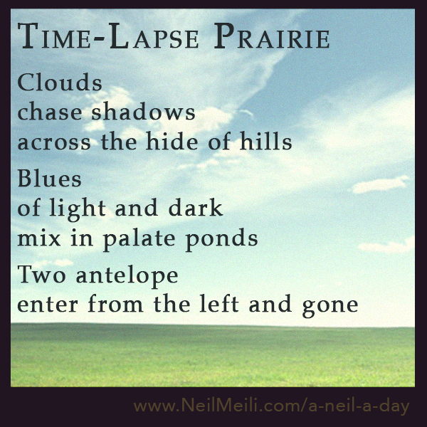 Clouds chase shadows across the hide of hills  Blues of light and dark mix in palate ponds  Two antelope enter from the left and gone