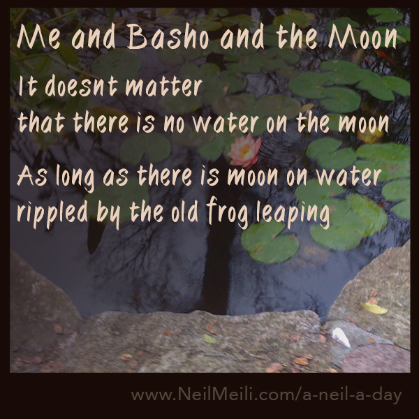 It doesn't matter that there is no water on the moon  As long as there is moon on water rippled by the old frog leaping