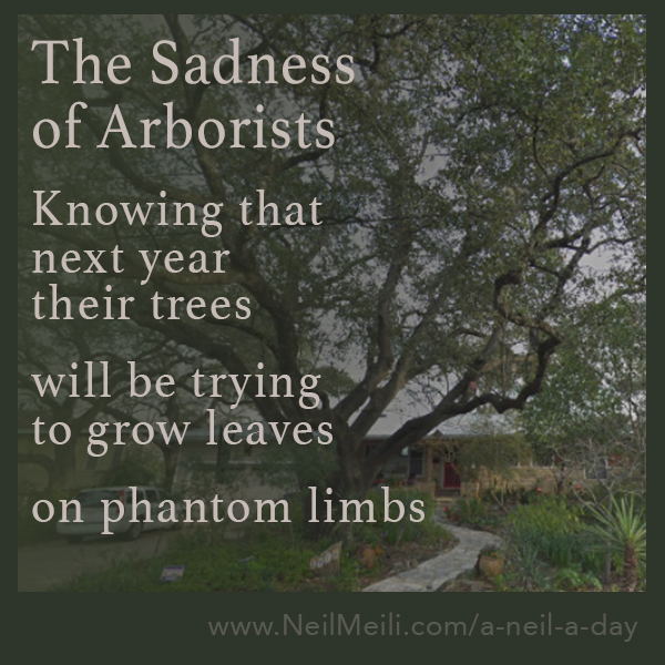 Knowing that next year  their trees  will be trying to grow leaves on phantom limbs