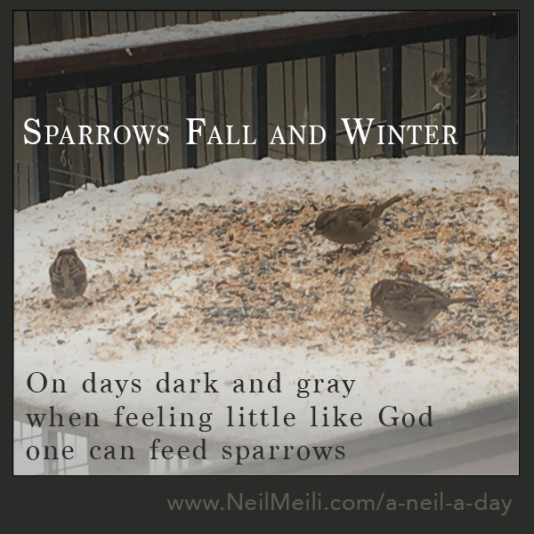 On days dark and gray when feeling little like God one can feed sparrows