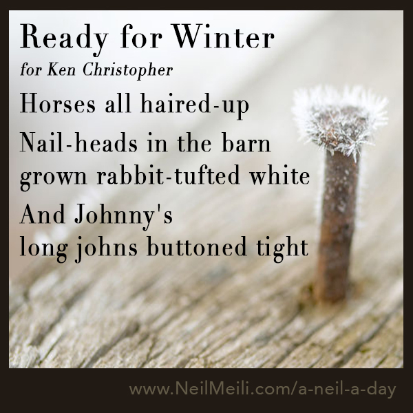Horses all haired-up   Nail-heads in the barn grown rabbit-tufted white   And Johnny's  long johns buttoned tight