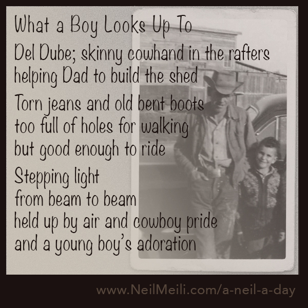 Del Dube; skinny cowhand in the rafters helping Dad to build the shed  Torn jeans and old bent boots too full of holes for walking but good enough to ride  Stepping light from beam to beam held up by air and cowboy pride and a young boy's adoration