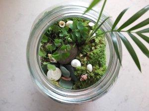 terranium mk design vanessa floral