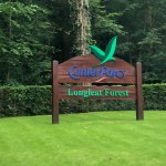Center Parcs 2021 – Day One – Where the Kettle Makes no Difference to Your Holiday Enjoyment