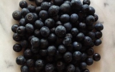 Blueberries – the Blue Jewel! It's National Blueberry Month!