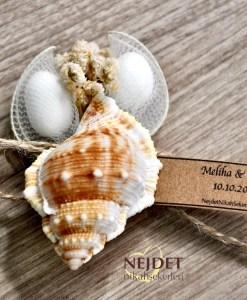 gerçek deniz kabuğu nikah şekeri