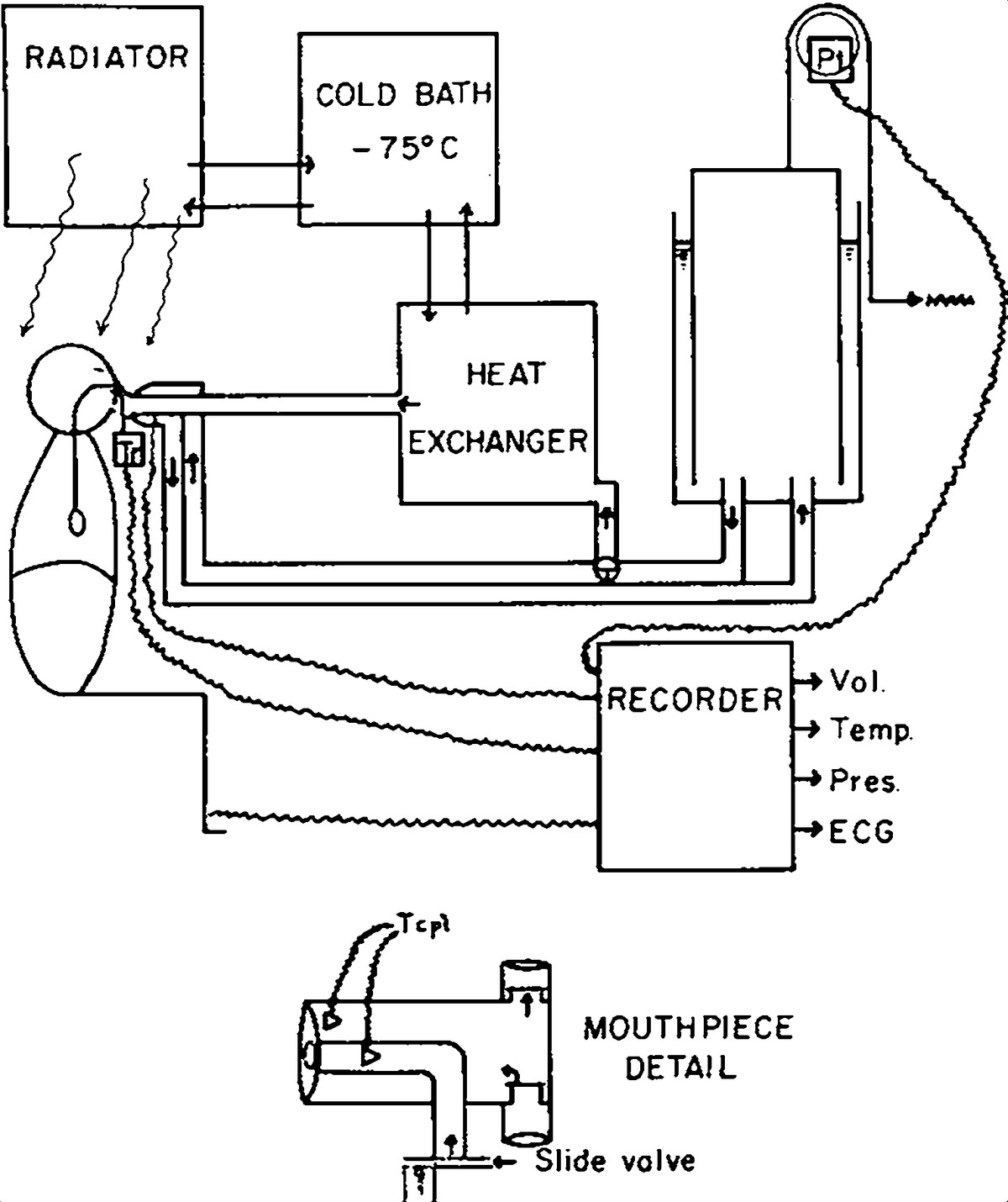 Effects Of Cold Air On Respiratory Airflow Resistance In