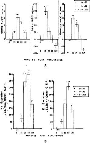 Renal and Extrarenal Hemodynamic Effects of Furosemide in