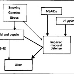 Pathophysiology Of Peptic Ulcer Disease Diagram Rheem Ac Unit Wiring Pathogenesis And Implications For Therapy
