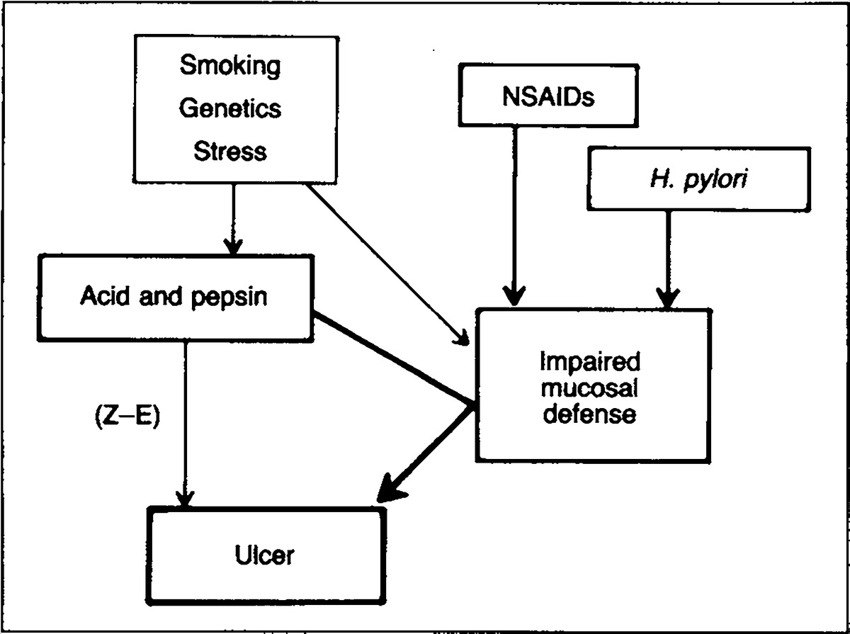 pathophysiology of peptic ulcer disease diagram wiring for 7 way trailer connector pathogenesis and implications therapy