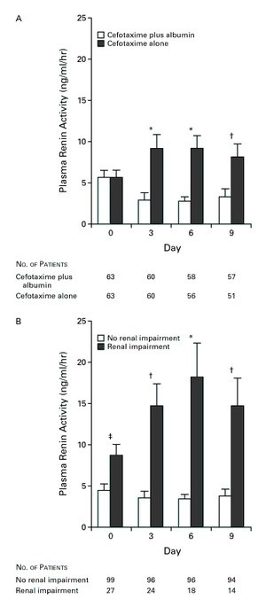 Effect of Intravenous Albumin on Renal Impairment and