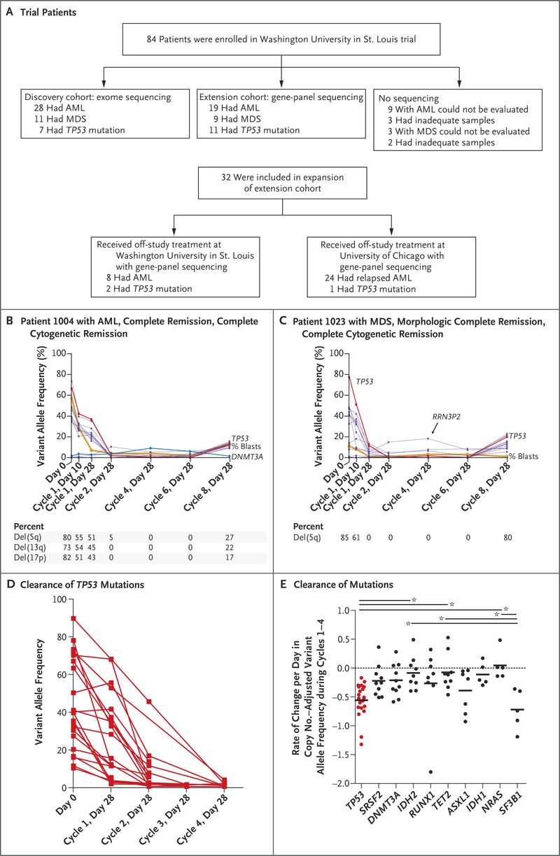 medium resolution of patients