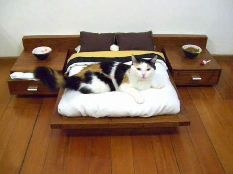 cat_furniture05
