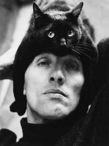 cat_hats04