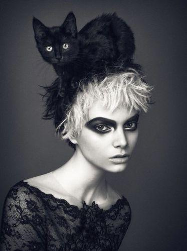 cat_hats11