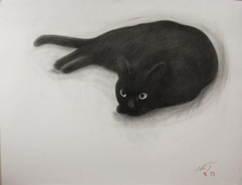 yukio_takahashi_cat03