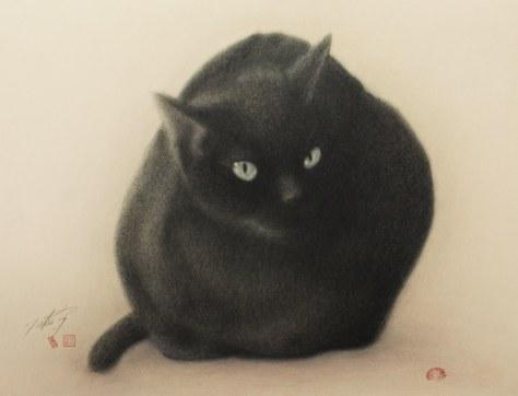 yukio_takahashi_cat04