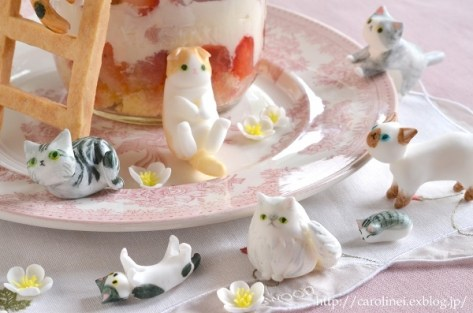 2016_02_cat_sweets04