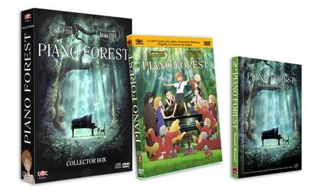 «Piano Forest» en DVD