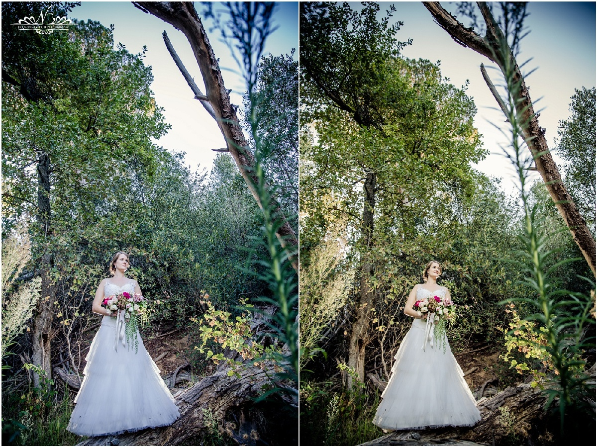 Towerbosh-wedding-photos-nelis-engelbrecht-photography-049