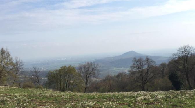 Monte Ceva dove la bussola punta sbagliato (Colli Euganei)