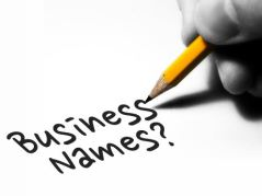 searching for a business name