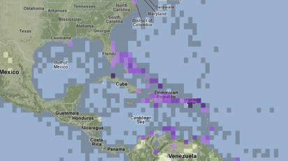 As you can see from this map of eBird sightings, it seems very reasonable to expect White-cheeked Pintails to show up along the Atlantic Coast of Florida from time to time. Also note that if Cuba had any eBirders, the entire country would be purple.