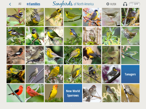 Browsing is very iPad friendly, with just a flick of the finger to move through pages of birds sorted taxonomically