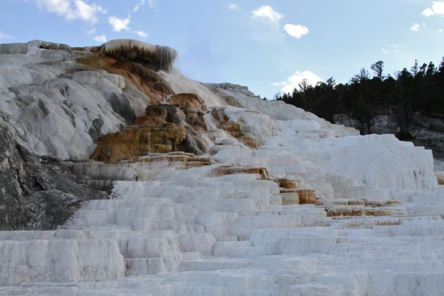 Mammoth Hot Springs, Yellowstone NP (Photo by Alex Lamoreaux)