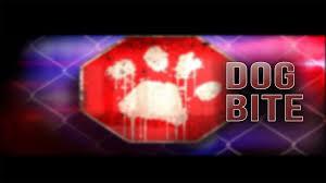 dog bite graphic
