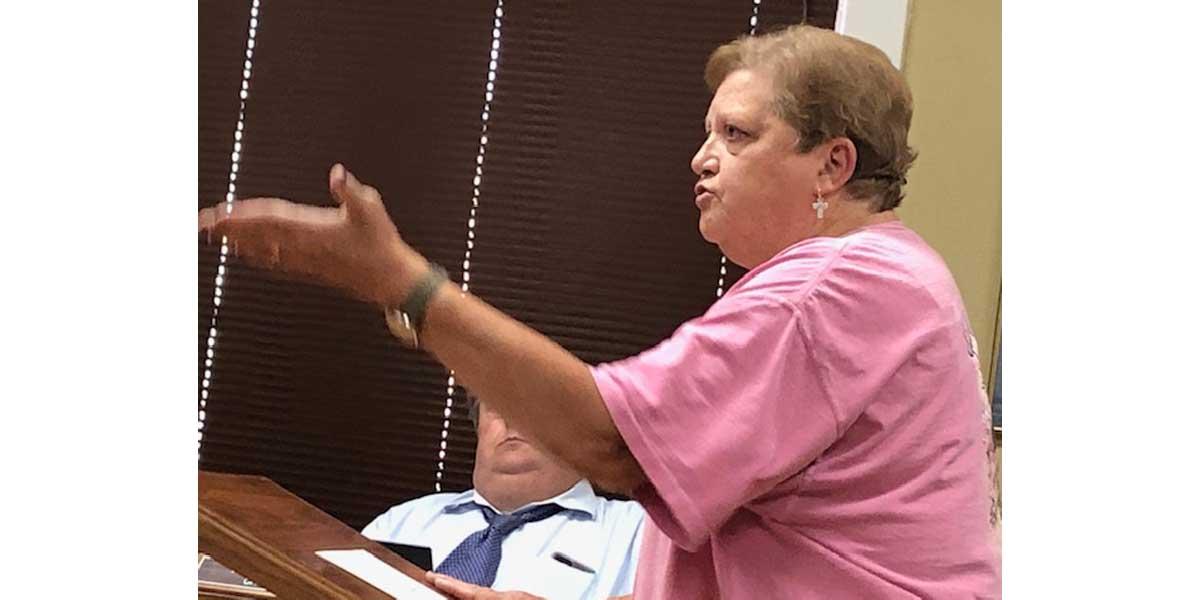 NEMiss.News Cindy Baker addresses aldermen