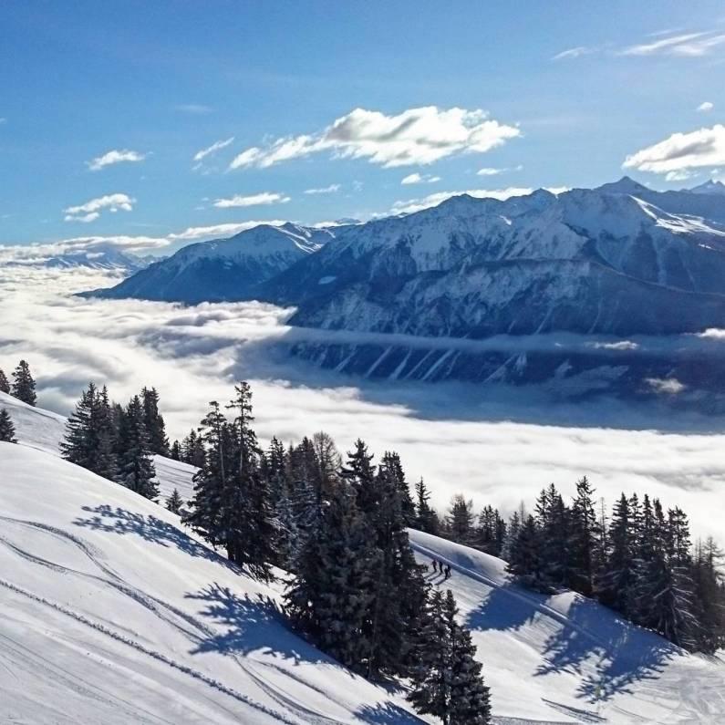 #montana