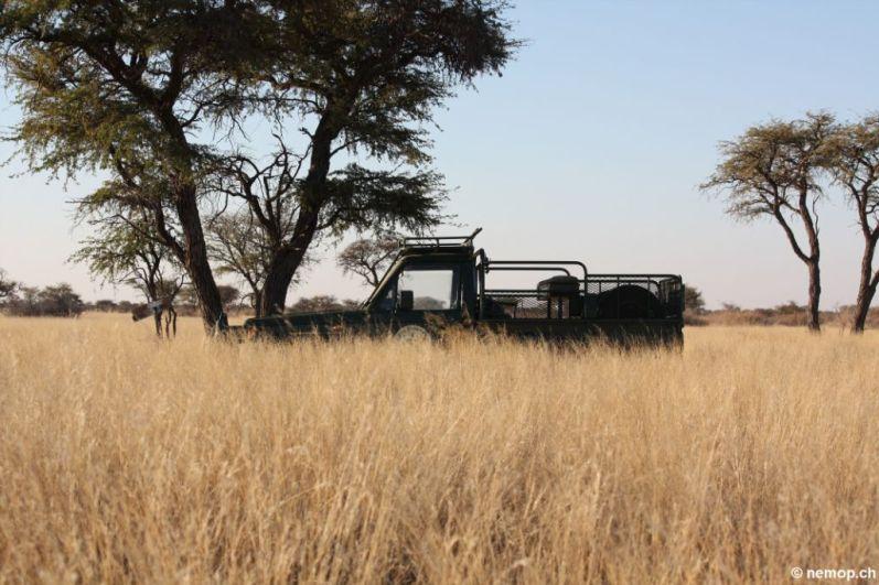 namibia-41