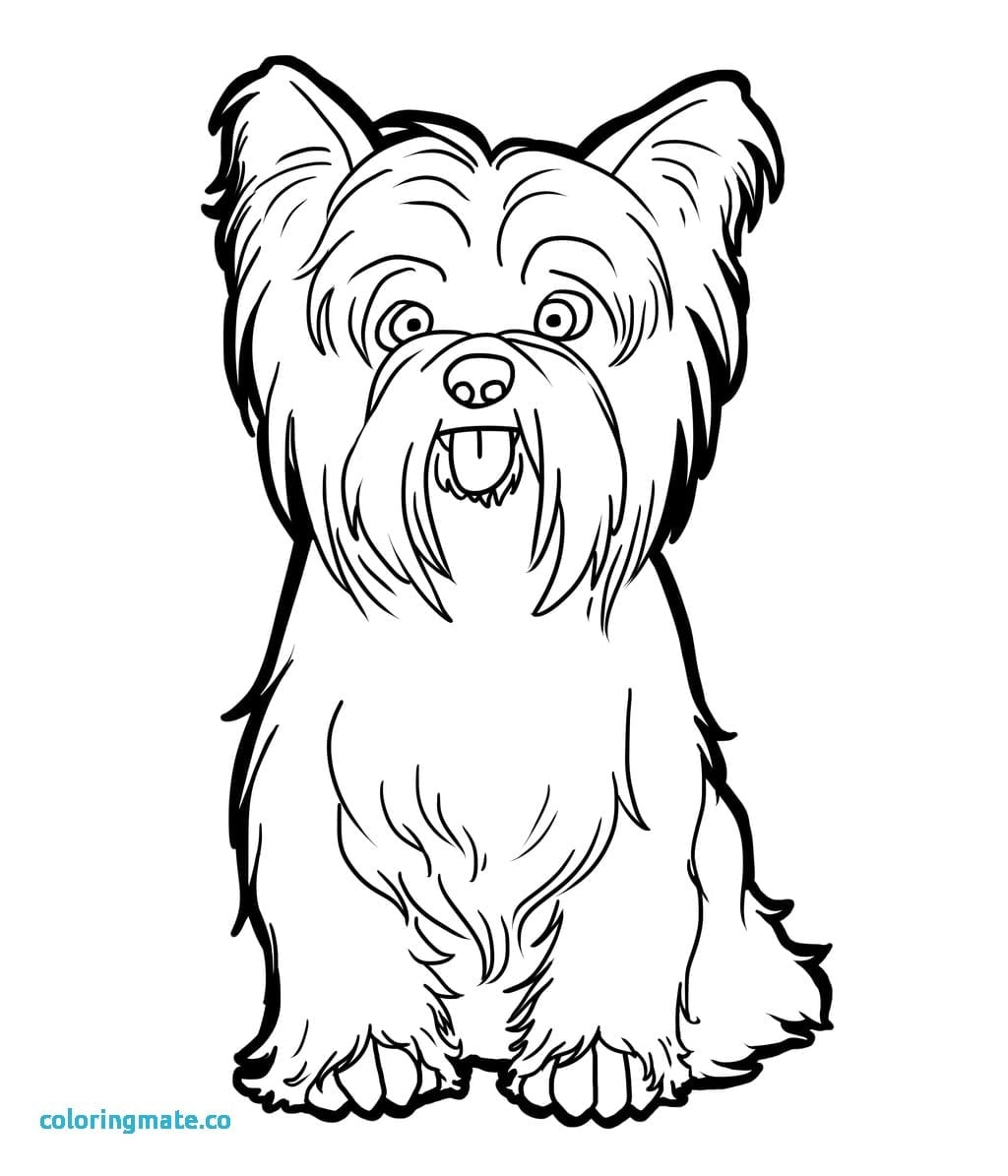 igloo coloring pages teachers - photo#31