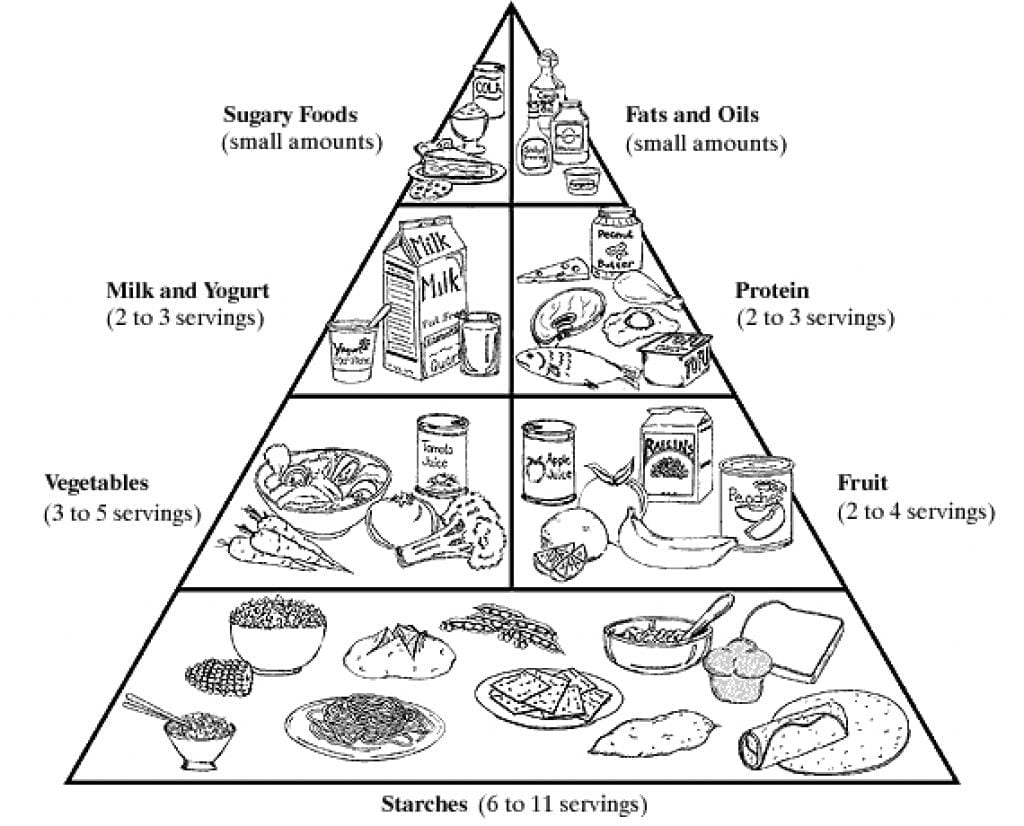 Pages Food Pyramid Coloring Pages