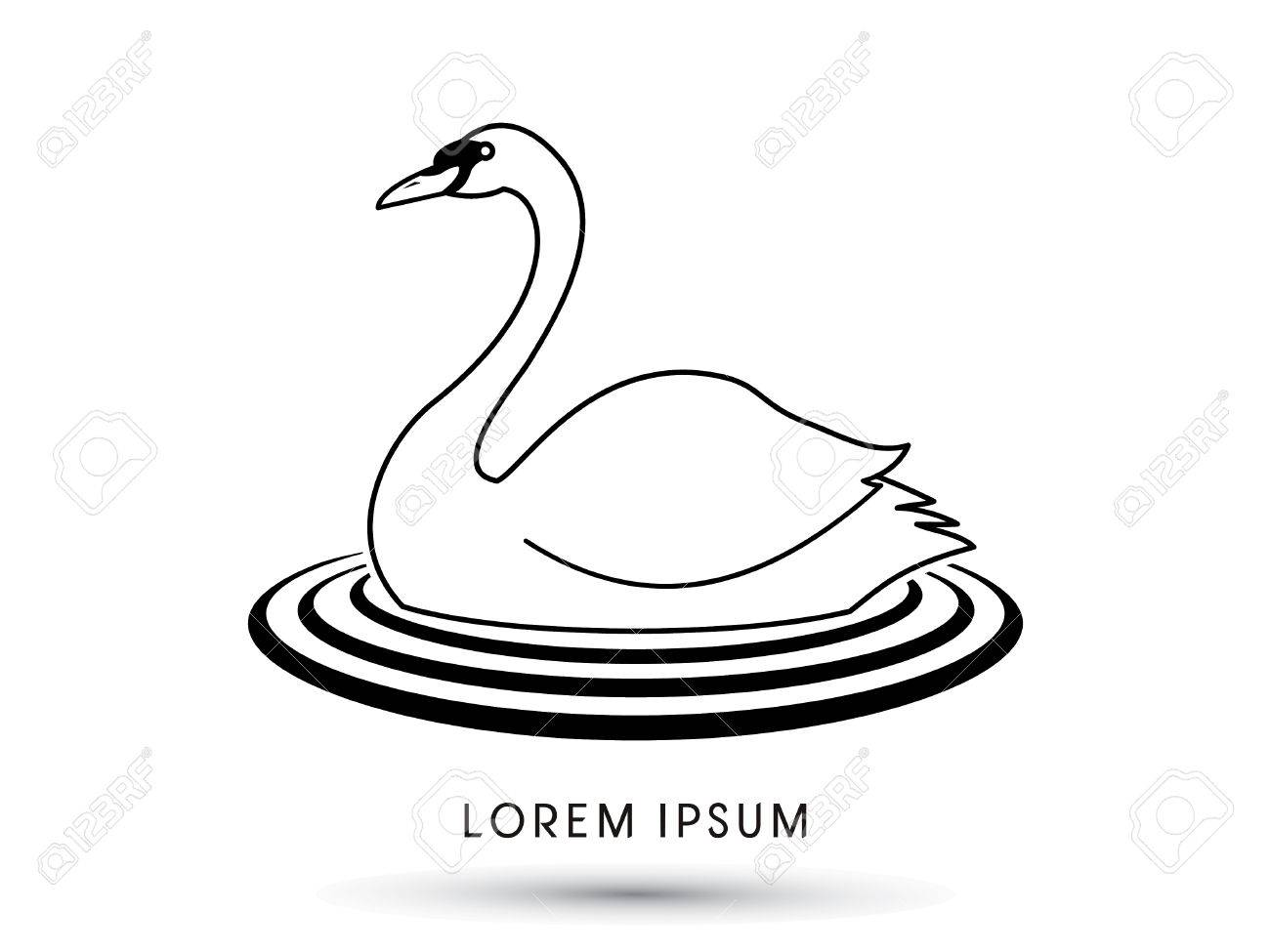 Swan Swimming Designed Using Outline Graphic Vector
