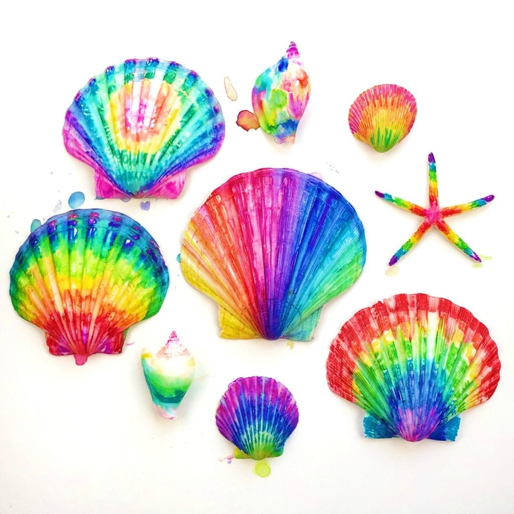 Coloring Seashells With Sharpies