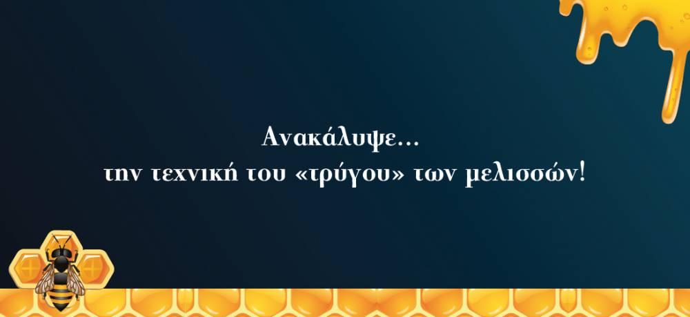 ΦΕΣΤΙΒΑΛ ΜΕΛΙΟΥ_Page_01