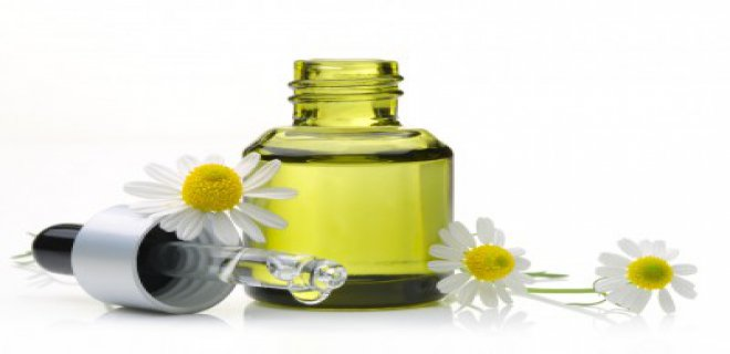 papatya yagi - Benefits Of Chamomile Oil