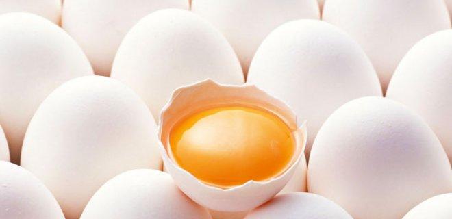 yumurta sarisi - Iron-Rich Foods