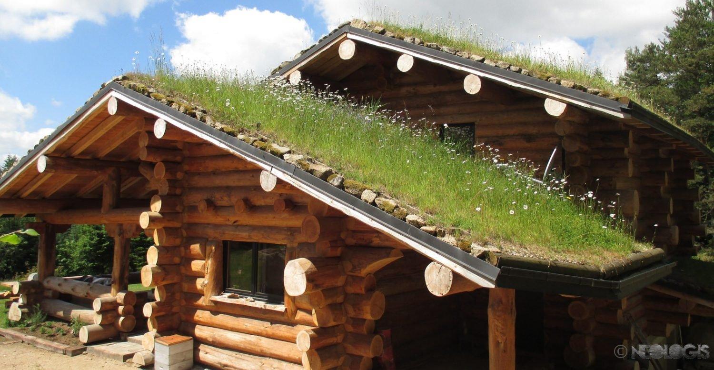 construction fuste maison bois brut