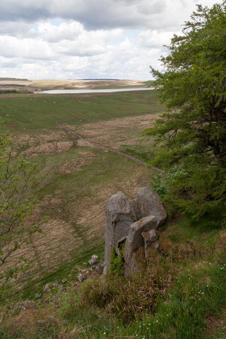 Hadrian's Wall, Looking North