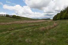 Housesteads Landscape