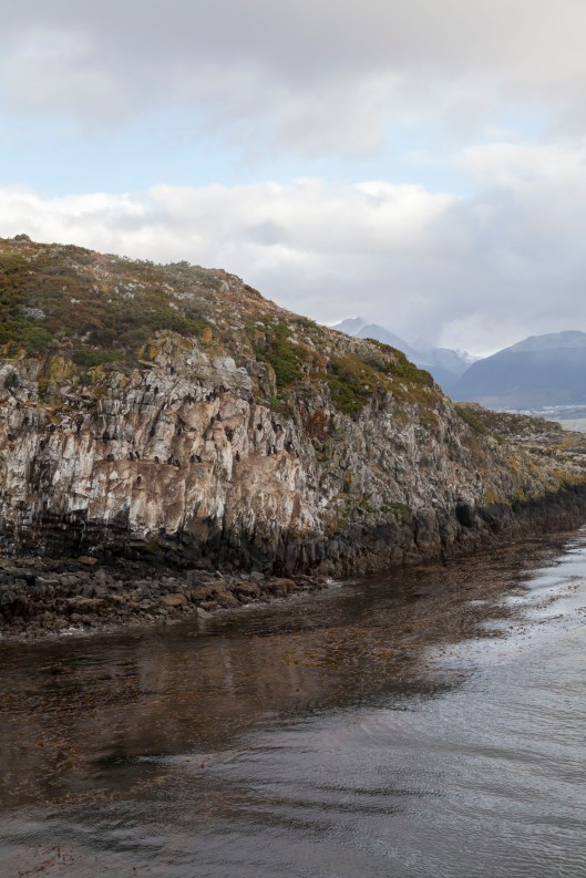 Beagle Channel Island